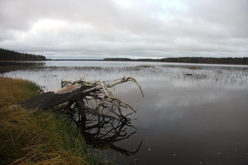 Kuivasjärvi on Parkanon alueen merkittävä kohde.