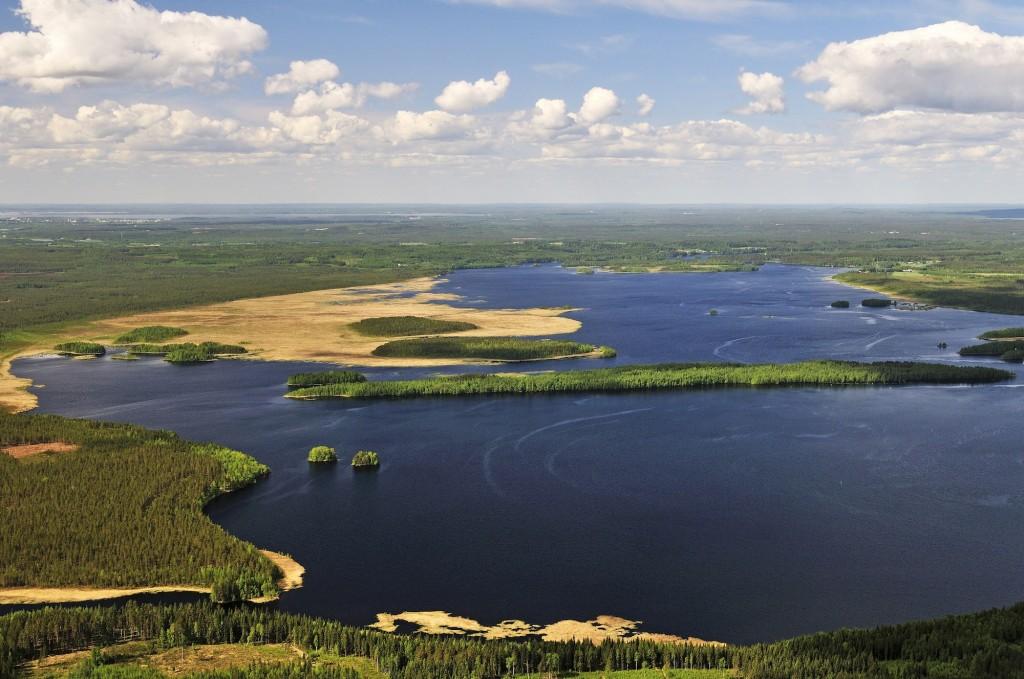 Jukajoki purkaa Pielisjokeen Pitkärannan pohjoispuolella. Kuva: Matti Pihlatie.
