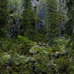 Vaara-Karjalan koulut ja kulttuurin elvytys