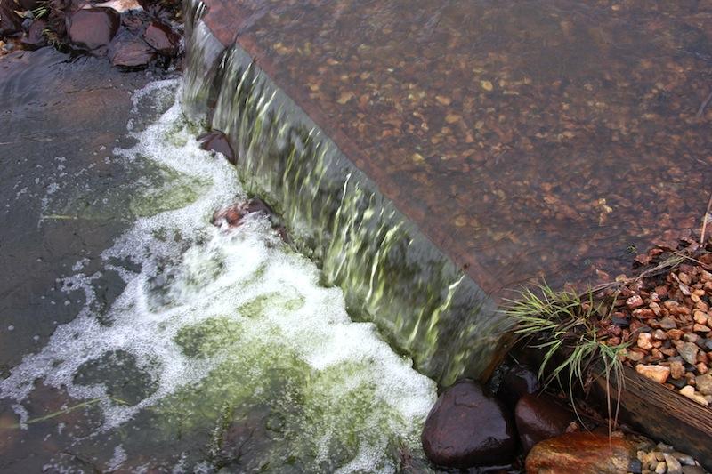 Linnunsuon kosteikolta lähtevä vesi 13.5.2015. Vihreä väri johtuu nielu- ja viherlevistä - terveen tilanteen indikaattori. OSK Lumimuutos, 2015