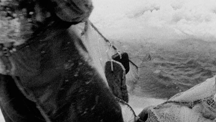Puruveden nuotalla 1964. Yle, käytetty luvalla.
