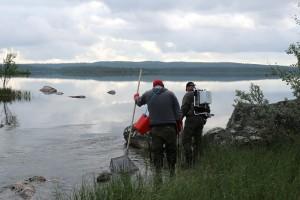 Dosentti Tero Mustonen ja Lapin ELY:n ylitarkastaja Jarmo Huhtala sähkökalastavat Kirakkakoskella.