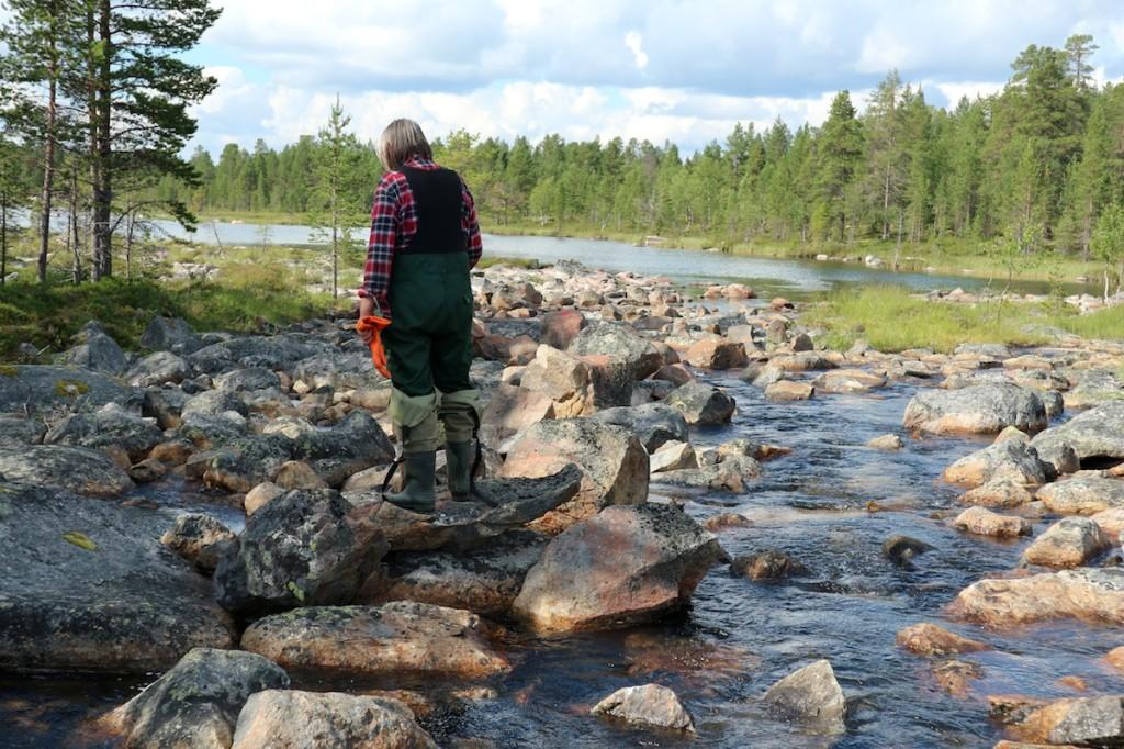 Vainosjoen alapää on saatu lähemmäksi luonnontilaa. Vladimir Feodoroff tarkastelee päivän tuloksia.