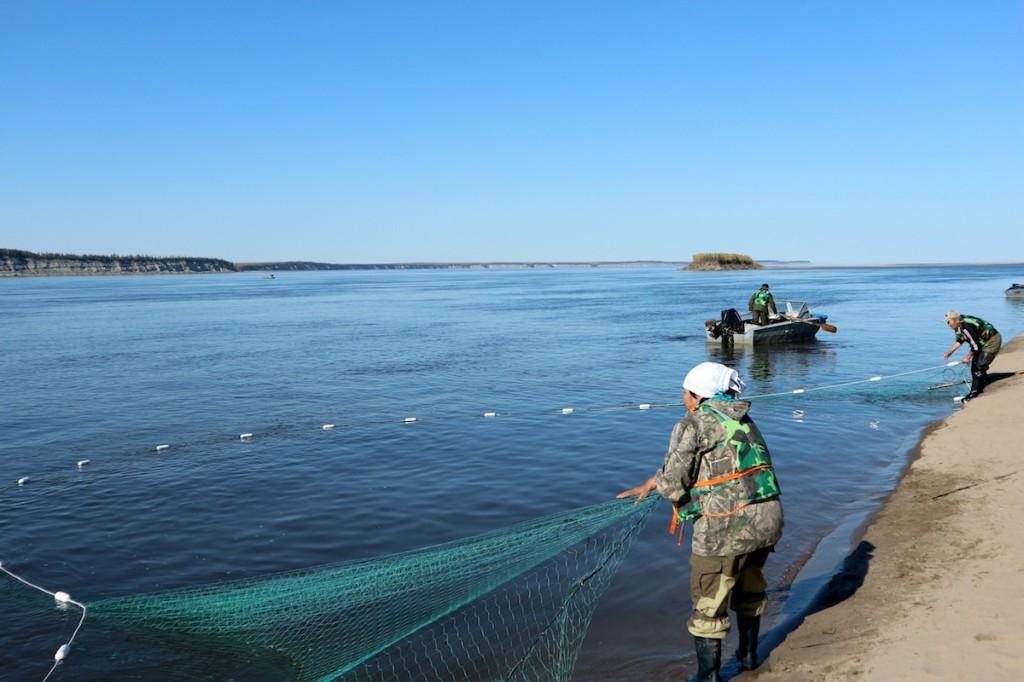 Tsiganskin kylässä Lena-joella, Koillis-Siperiassa jokinuottausperinne voi vielä hyvin. Kuva: Tero Mustonen