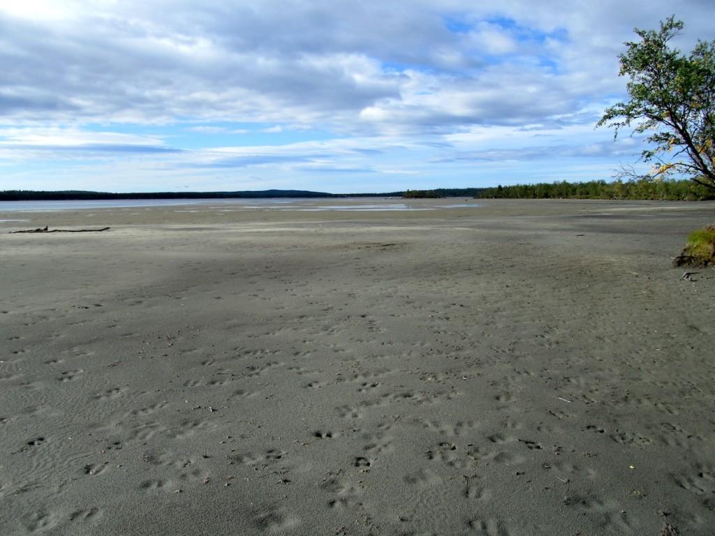 Sevettijärven katoavat rannat. OSK Lumimuutoksen arkisto