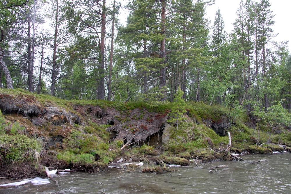 Martinniemen eroosio. OSK Lumimuutos