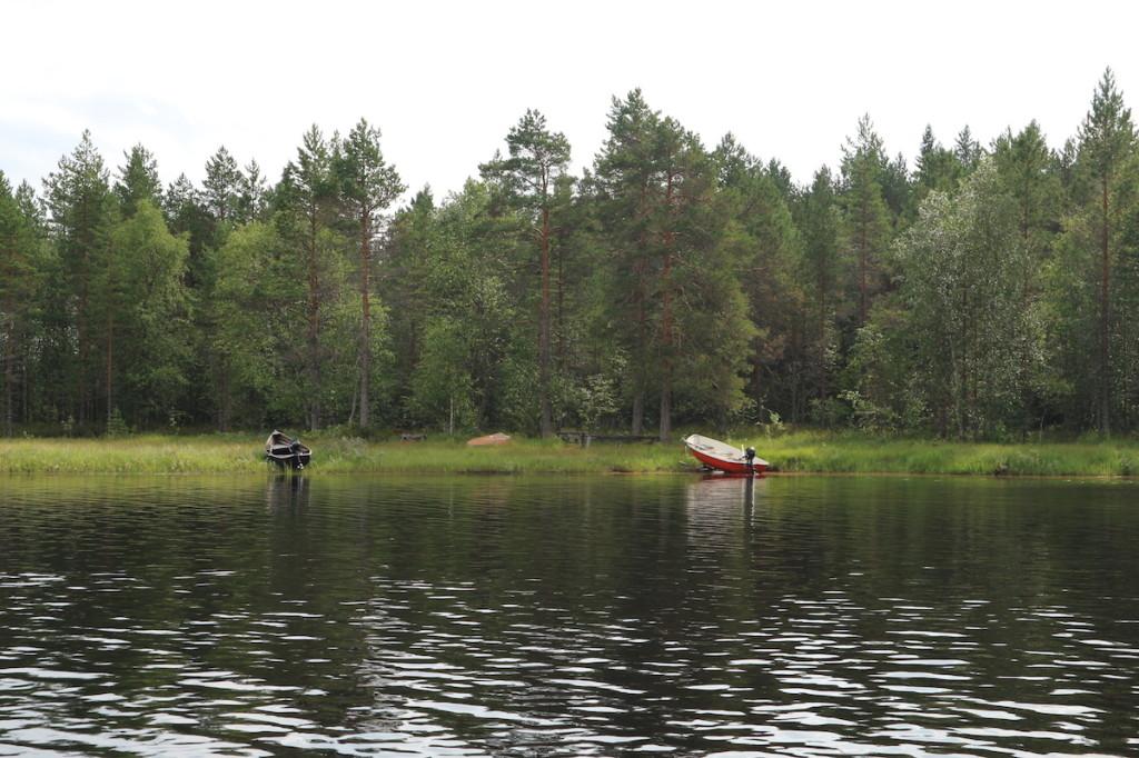 Koitajoki